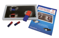 Image for Delta Education Magnetic Field Pattern Kit from School Specialty