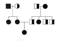Science Genetic Studies, Item Number 1399008
