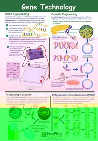 Genetics, Natural Selection, Item Number 1413691