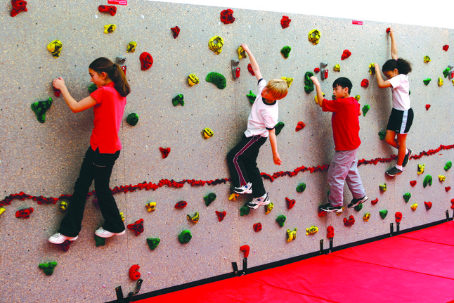 Upper Body Climbing Equipment, Item Number 2041327