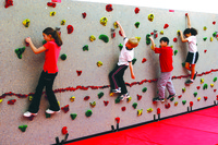 Image for Everlast Physical Education Complete Traversing Wall Package, 40 Foot Wall, Various Options from School Specialty