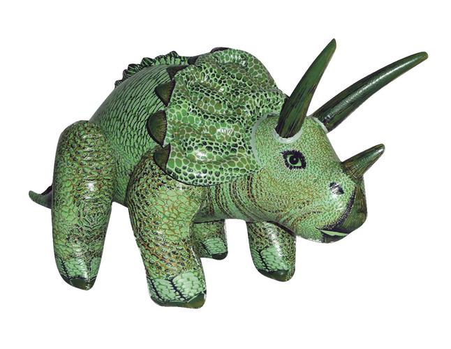 Fossils, Dinosaurs, Item Number 1429965