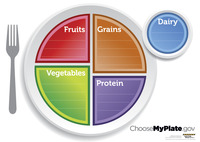 Health, Wellness Resources Supplies, Item Number 1433383