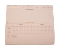 Cumulative Record Folders, Item Number 1481893