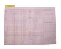Cumulative Record Folders, Item Number 1481894