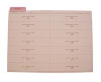 Cumulative Record Folders, Item Number 1481896