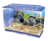 Aquariums, Aquarium Supplies, Item Number 1489158