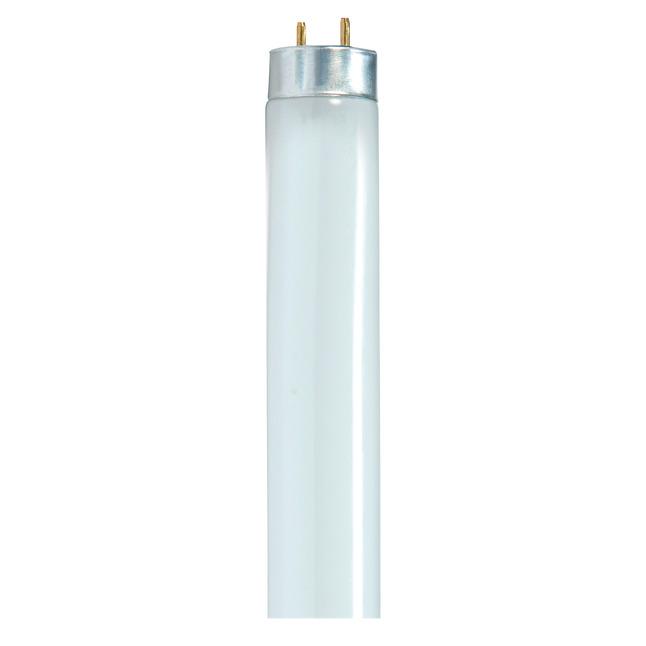 Light Bulbs, Item Number 1498331
