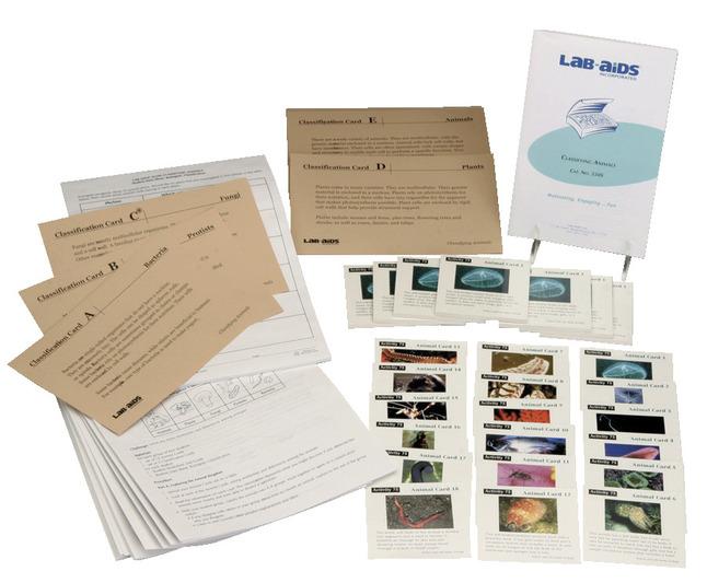 Biology Classification Studies, Item Number 1500952