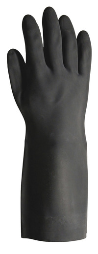 Exam Gloves, Exam Holders, Item Number 1536138