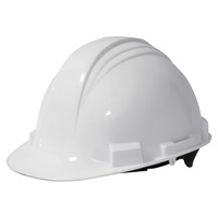 Hard Hats, Headgear, Item Number 1536991