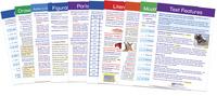 Reading Strategies, Resources Supplies, Item Number 1539616