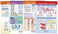 Science Genetic Studies, Item Number 1567130