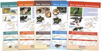 Science Animal Studies, Item Number 1567132