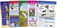 Science Animal Studies, Item Number 1567133