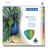 Colored Pencils, Item Number 1569284