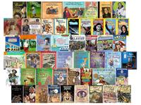 Book Sets, Box Sets, Book Box Sets Supplies, Item Number 1575435