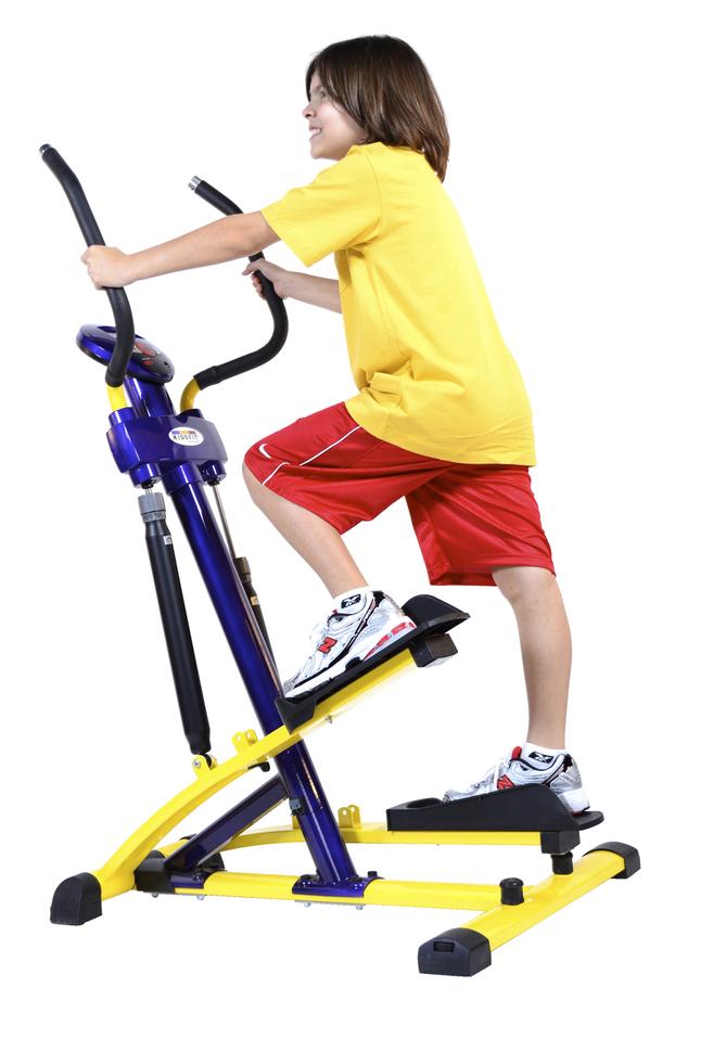 Exercise Equipment, Item Number 1577568