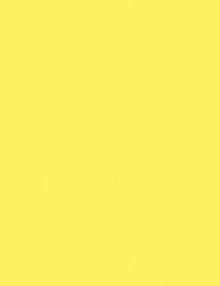Colored Copy Paper, Item Number 1591017