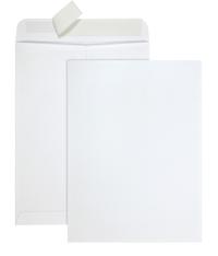 Business Envelopes, Item Number 1592756