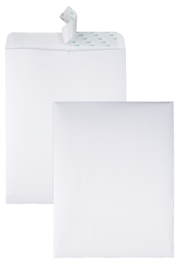 Business Envelopes, Item Number 1592757