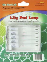 Individual Lab Slides, Item Number 1594112
