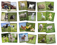 Animals, Nature Carpets And Rugs Supplies, Item Number 1595541