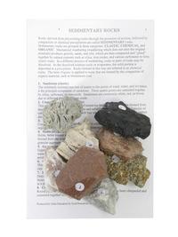 Rocks, Minerals, Fossils Supplies, Item Number 181-0866