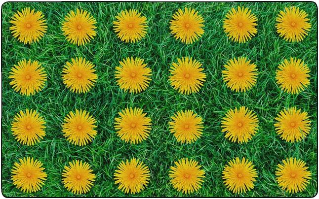 Carpets, Item Number 2003744