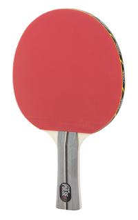 Table Tennis Equipment, Item Number 2004316