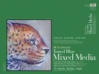 Multimedia Paper, Item Number 2004752
