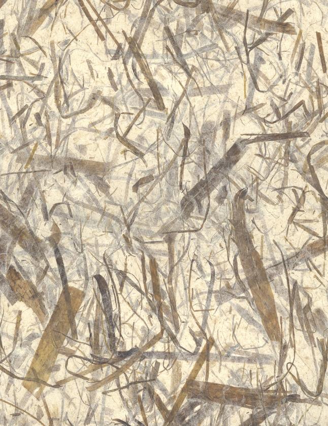 Decorative Paper, Item Number 2005656