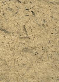 Decorative Paper, Item Number 2005663