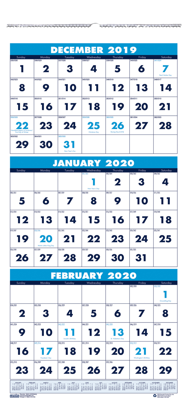 Image for House of Doolittle 3 Month Wall Calendar, 2020, 8 x 17 inches from School Specialty
