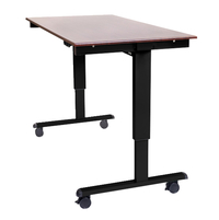Sit and Stand Workstations, Item Number 2007035