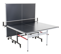 Table Tennis Equipment, Item Number 2009665