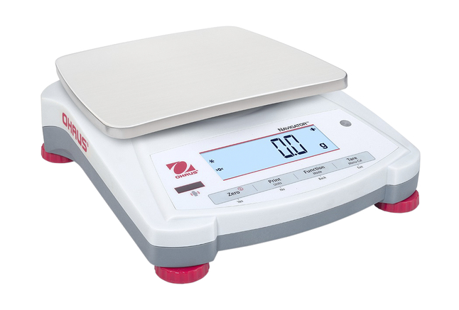 Electronic Balances, Item Number 2012761