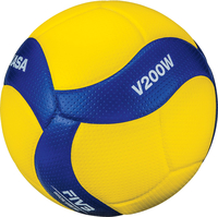 Volleyballs, Volleyball Balls, Volleyballs in Bulk, Item Number 2019895