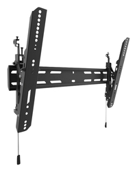 Projection Accessories & Wall Mounts