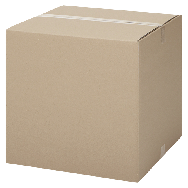 Image for International Paper Shipping Case, 12 x 18 x 12, Case of 25 from SSIB2BStore
