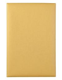 Manila and Clasp Envelopes, Item Number 2025911