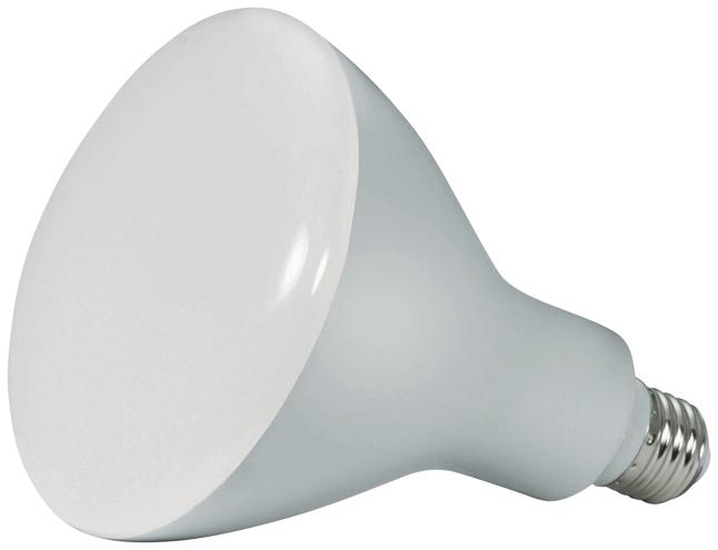 Light Bulbs, Item Number 2025956