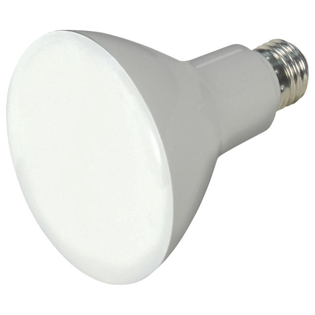 Light Bulbs, Item Number 2026021