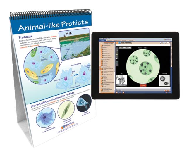 Microbology Supplies, Item Number 2026446
