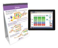 Genetics, Natural Selection, Item Number 2026450