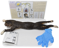 Image for Frey Choice Dissection Kit - Cat (DBL) without Dissection Tools from School Specialty