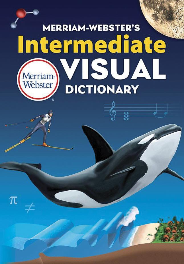 Dictionary, Item Number 2041349