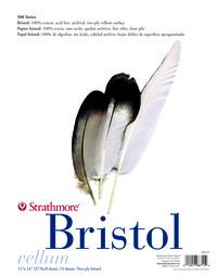 Bristol Boards, Item Number 234318