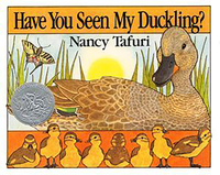 Image for Harper Collins Have You Seen My Duckling? Board Book from SSIB2BStore
