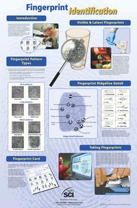 Fingerprint Forensics Evindence, Item Number 35-1101